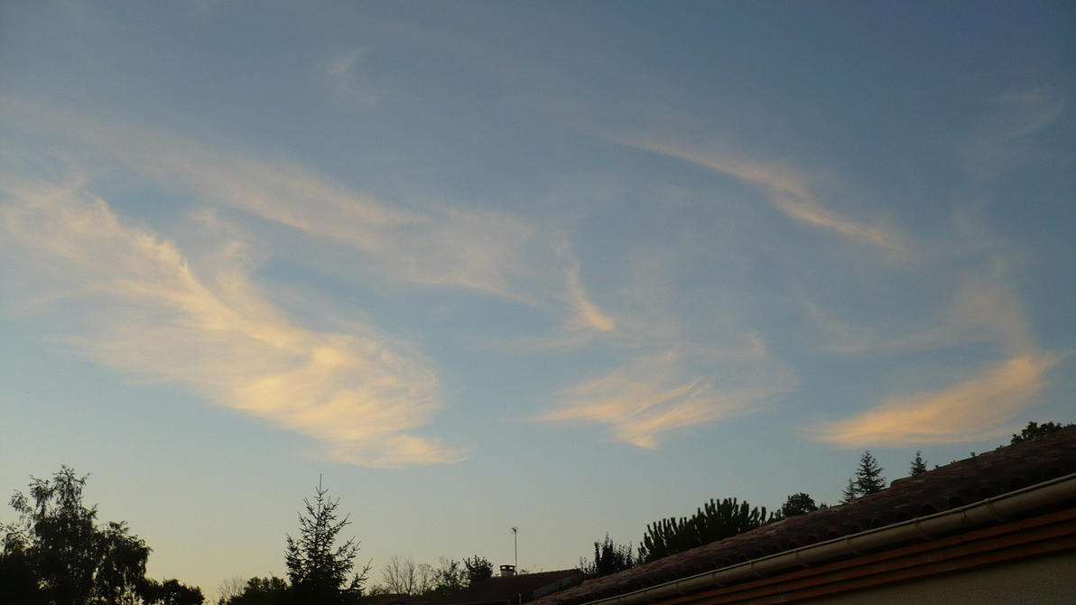 Cirrus Clouds meeting by nicolapin