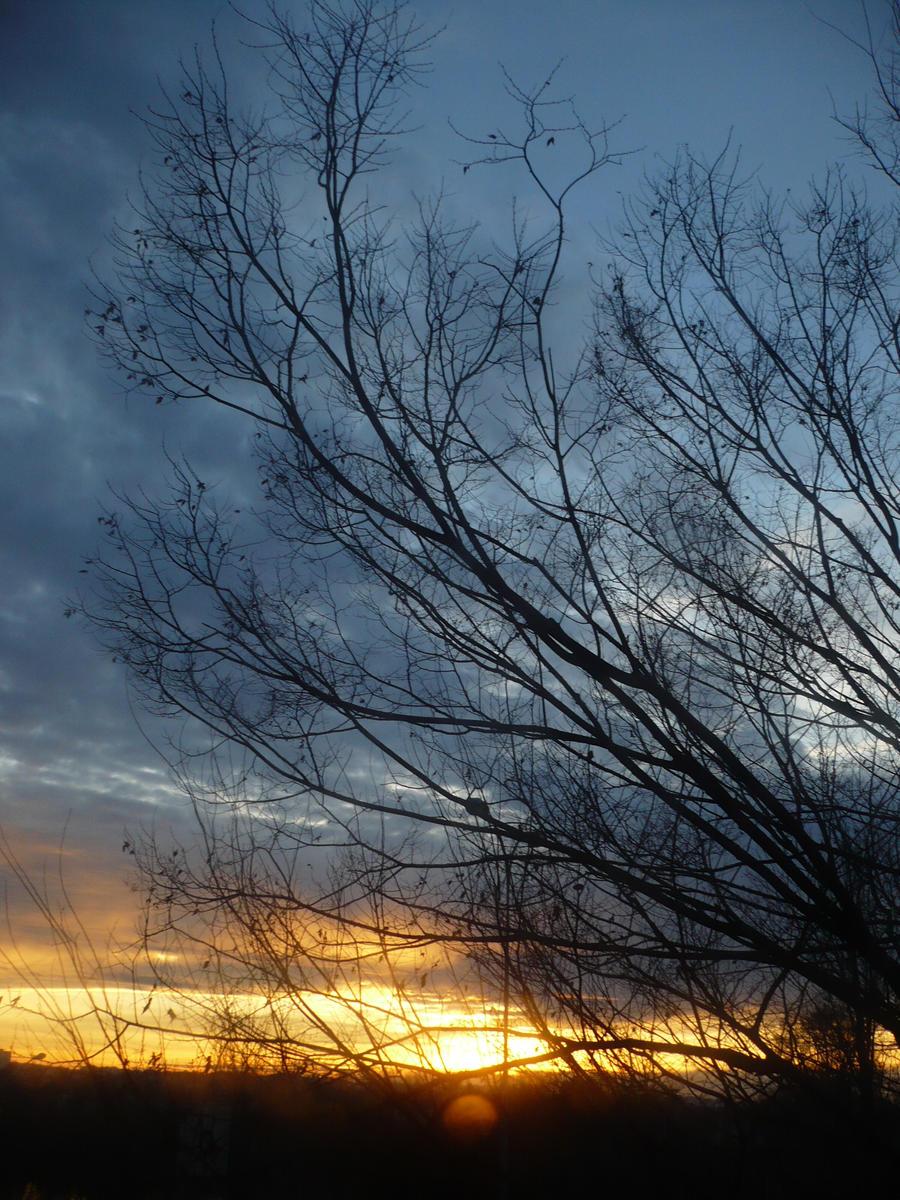 evening december sky 2 by nicolapin