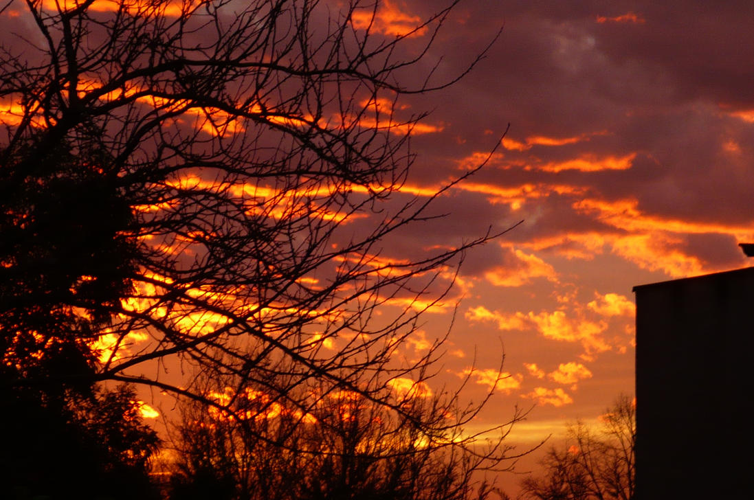 january evening sky by nicolapin