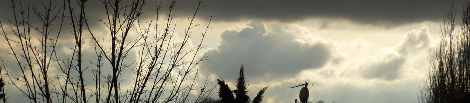 Grey clouds and trees by nicolapin