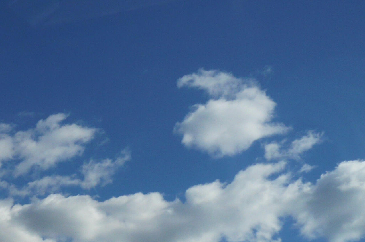 bunny have a walk in the sky by nicolapin