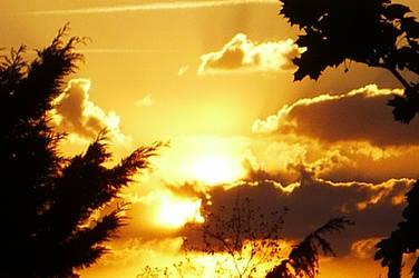 le ciel comme de l'or