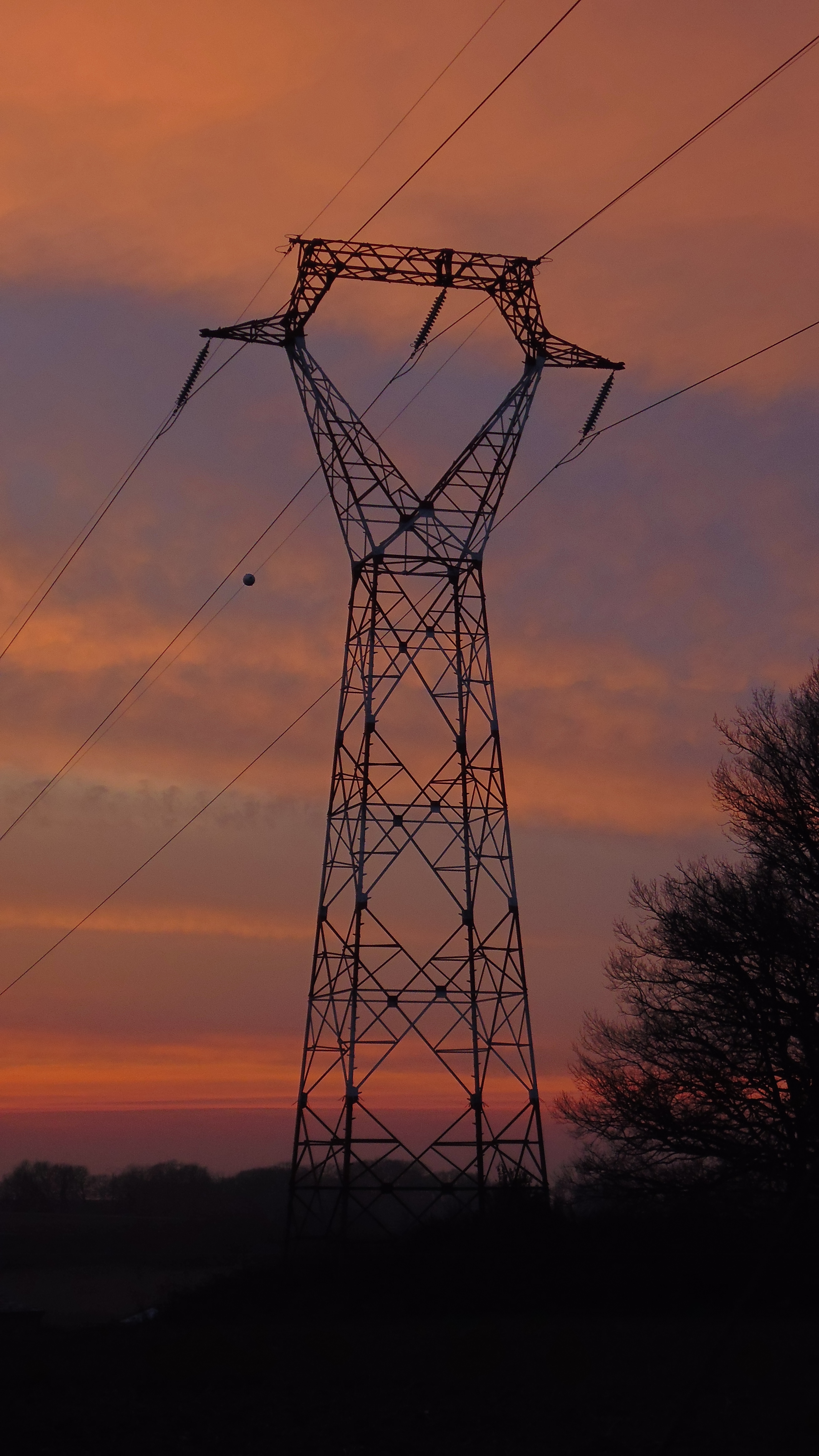 electricity and evening by nicolapin