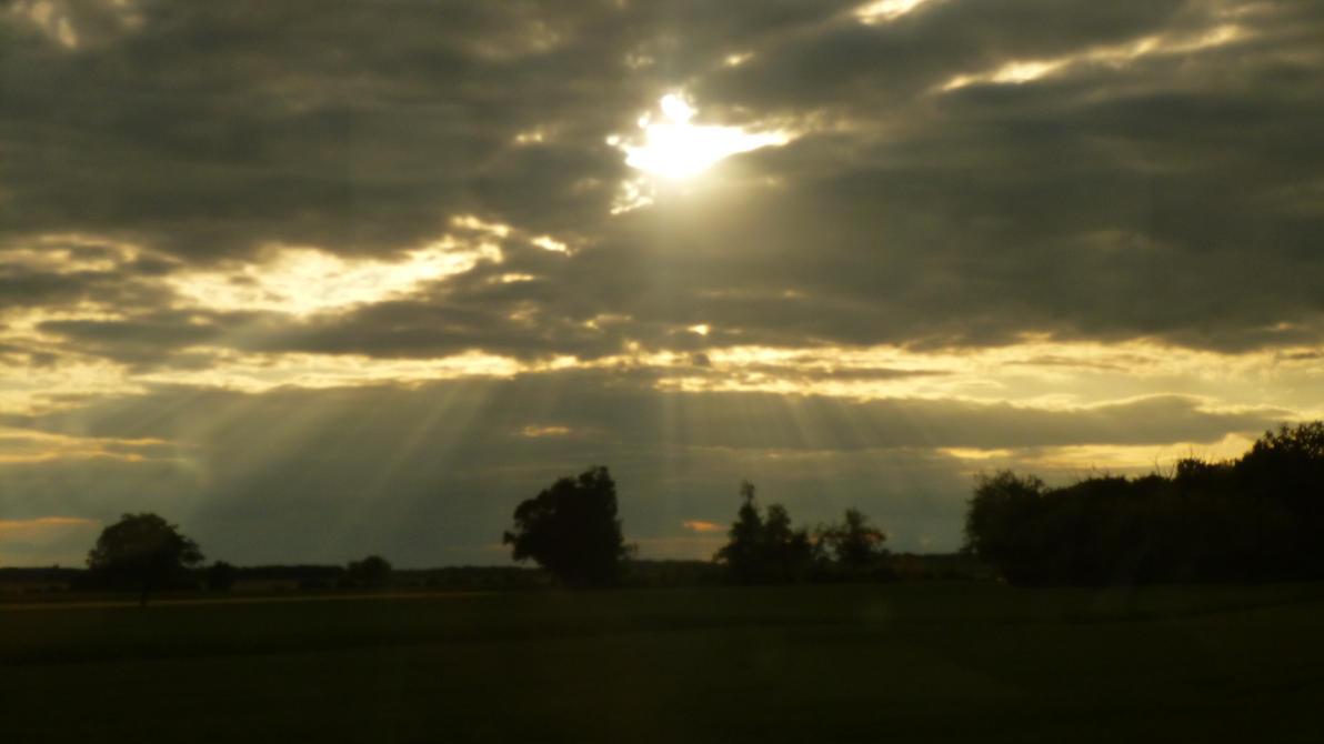sunbeam's rain by nicolapin