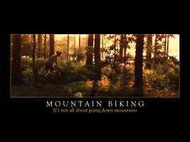 Mountain Biking Wallpaper 1600 by smokeymac
