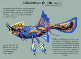 Balaenoptera Niwin-swira by AOZcouture