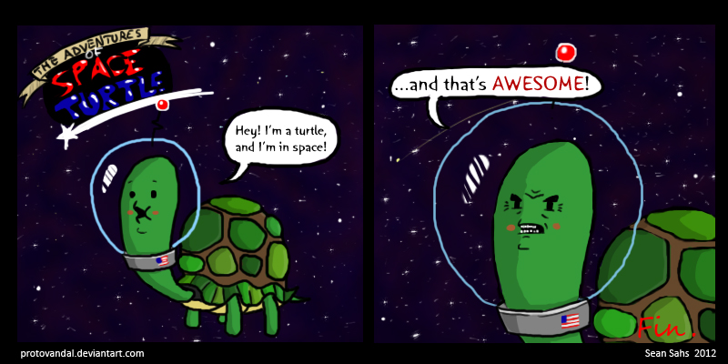 Image Result For Can A Turtle