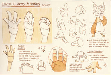 Bara's Guide to Griffians: FL Arms n' Hands by Baraayas