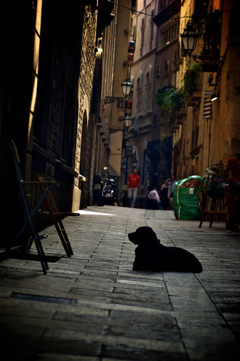 Barcelona by Bi-PolarBears