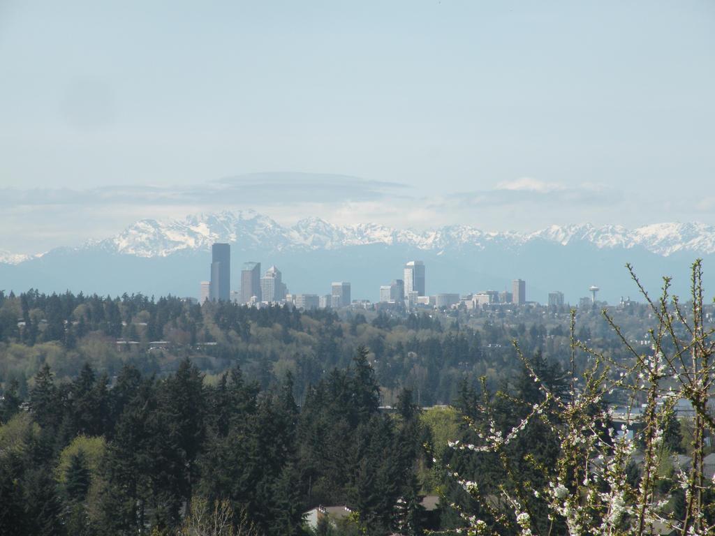 Seattle At A Distance by JorundShadefur