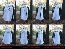 Assassin's Creed Hoodie by invader-gir