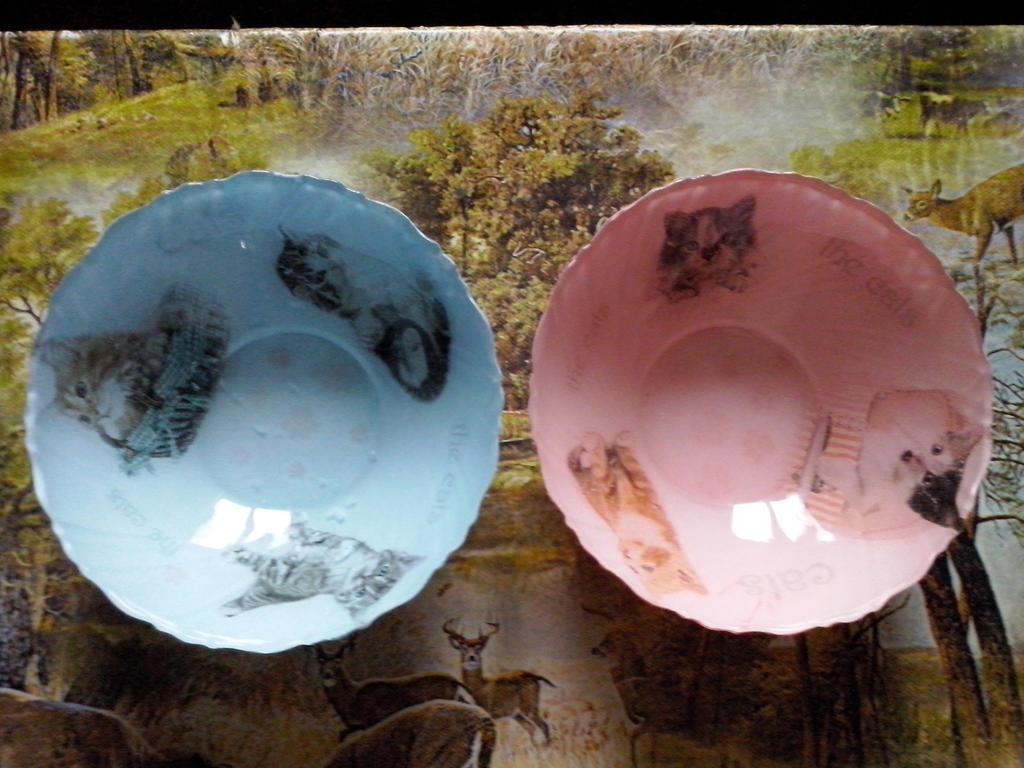 Decoupage - Kitten bowls by Akacja777