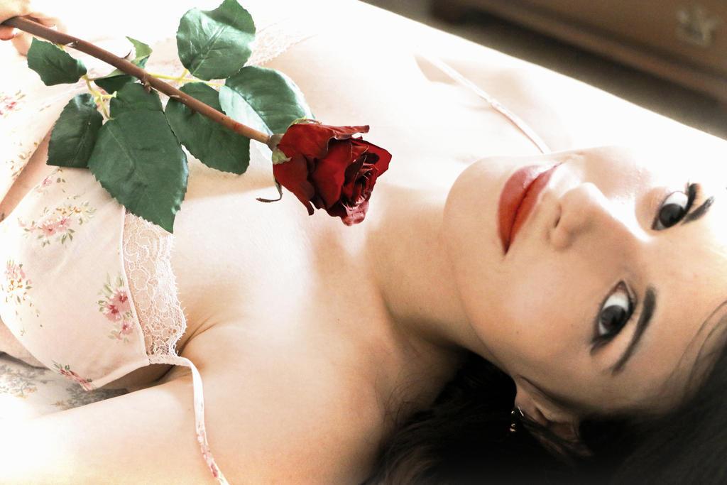 Red Flowers 19 by MemeYIL06