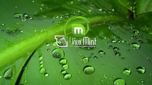 Linux Mint Debian wallpapers