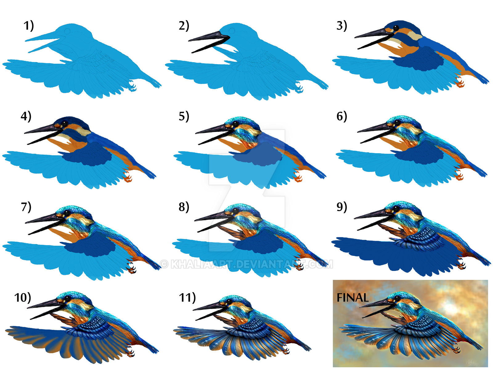 Kingfisher Wallpaper Tutorial