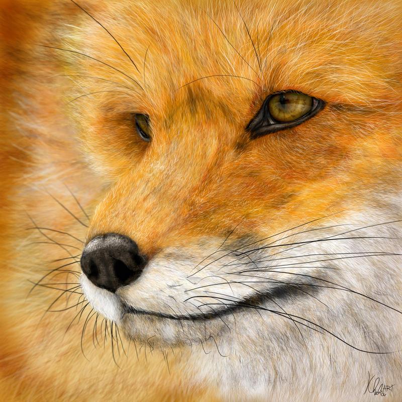 Fox - Digital Painting by KhaliaArt