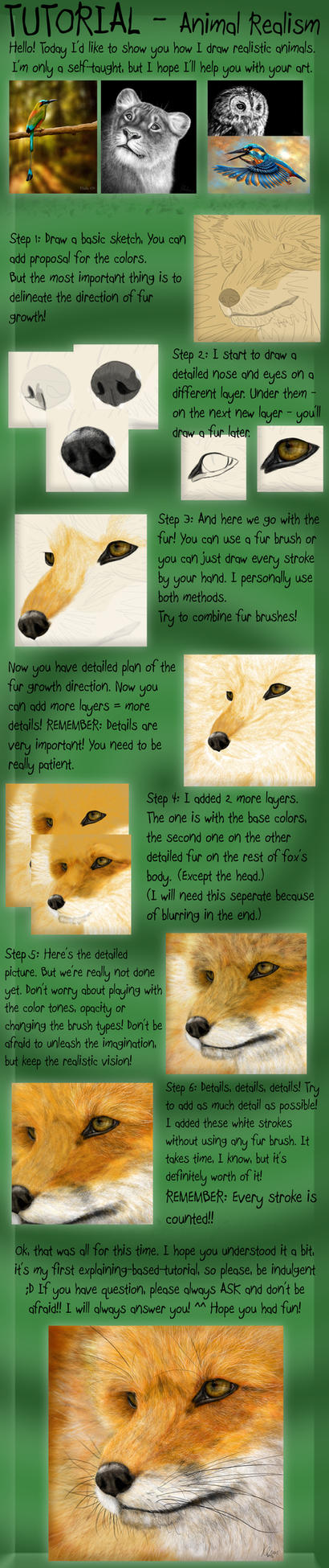 TUTORIAL - Animal Realism by KhaliaArt