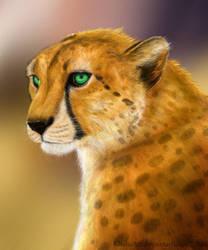 Cheetah Commission - Kweli