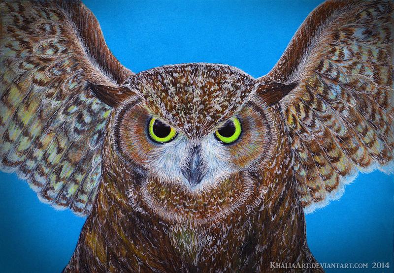Winged Friend - Owl Drawing by KhaliaArt