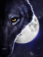On The Hunt (Dark Wolf)