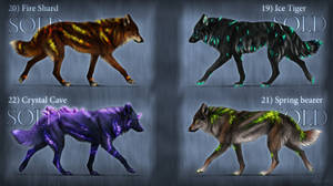 Closed/ Canis Lumen adopts by KhaliaArt