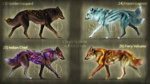 OPEN 1/4: Canis Lumen 23-26 by KhaliaArt