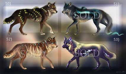 OPEN Adopts: Canis Lumen #50-53