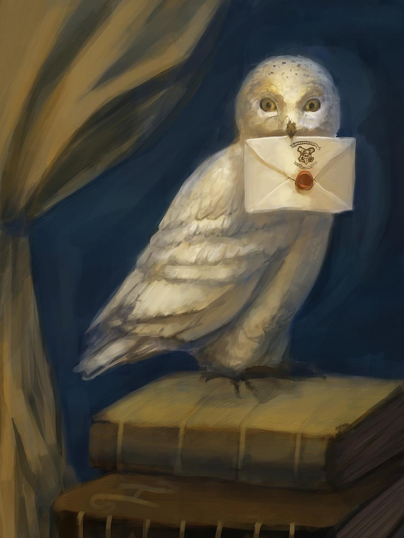 Hedwig Hello From Hogwarts By Nieris On Deviantart
