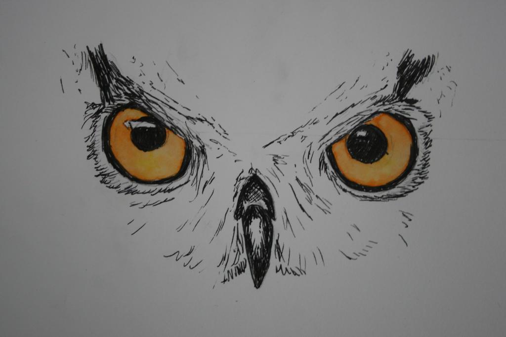 Owl Eyes Paintings The Owl's Eyes by Ghos...