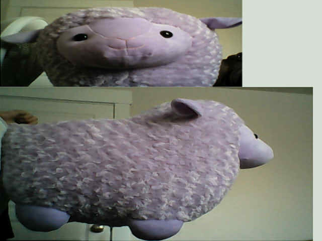 Fat Llama Plushie By 1warriorcats On Deviantart