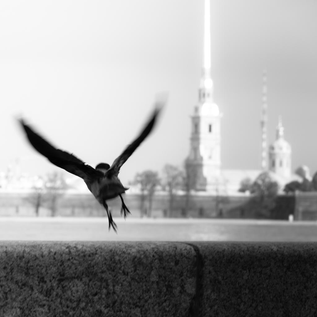 Fly by debagger