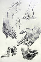 Anatomy Hand Studies 2014 by yolque