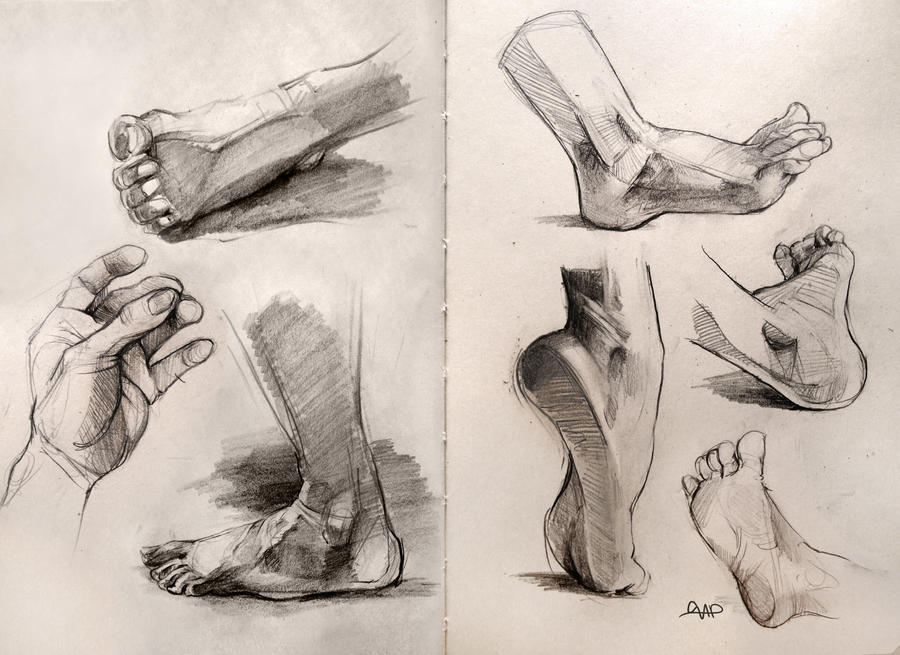 Anatomy Foot Studies 2014 by yolque on DeviantArt