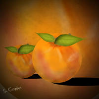 cizim by PashaSade