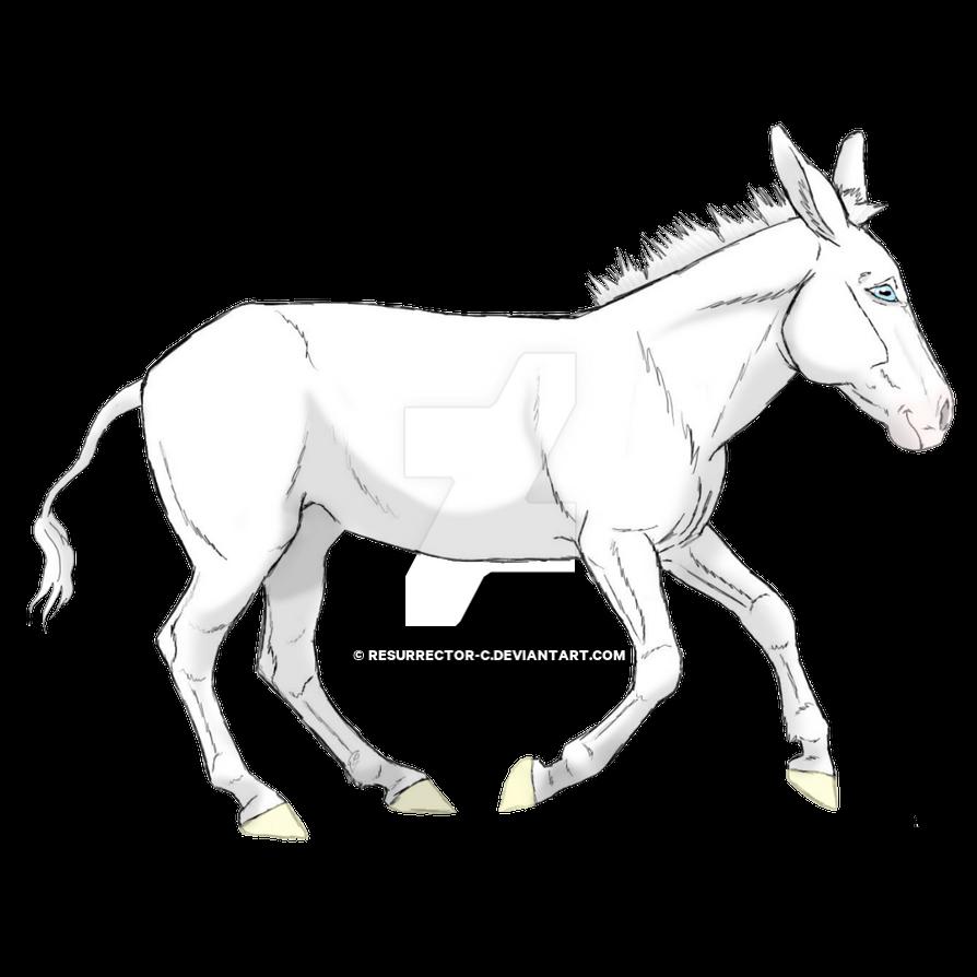 White Donkey by resurrector-c