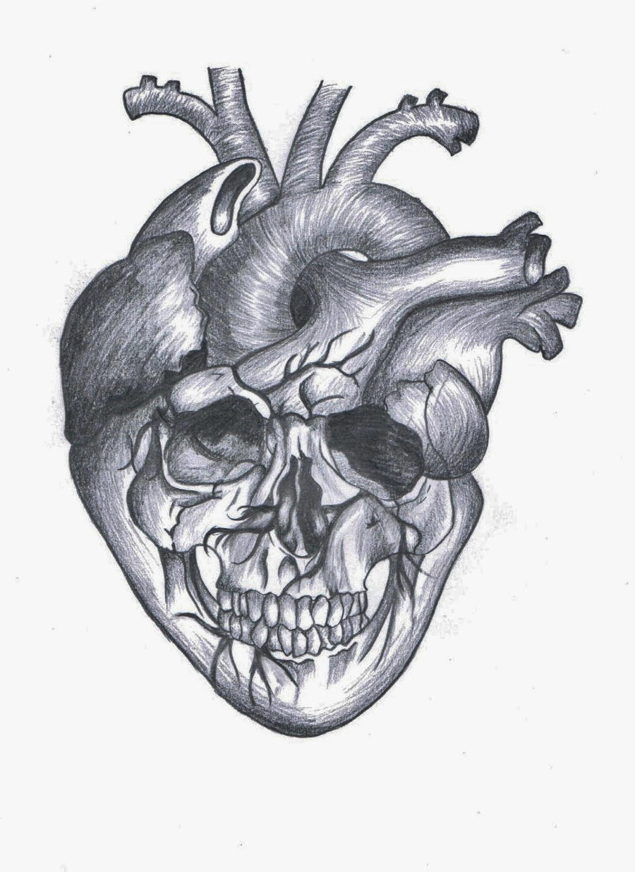 Heart Skull By LuckyChance07 On DeviantArt And Hearts Drawings