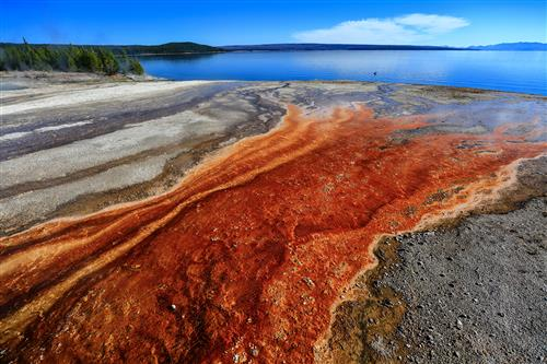 Hot springs, Yellowstone NP by boradaphotography