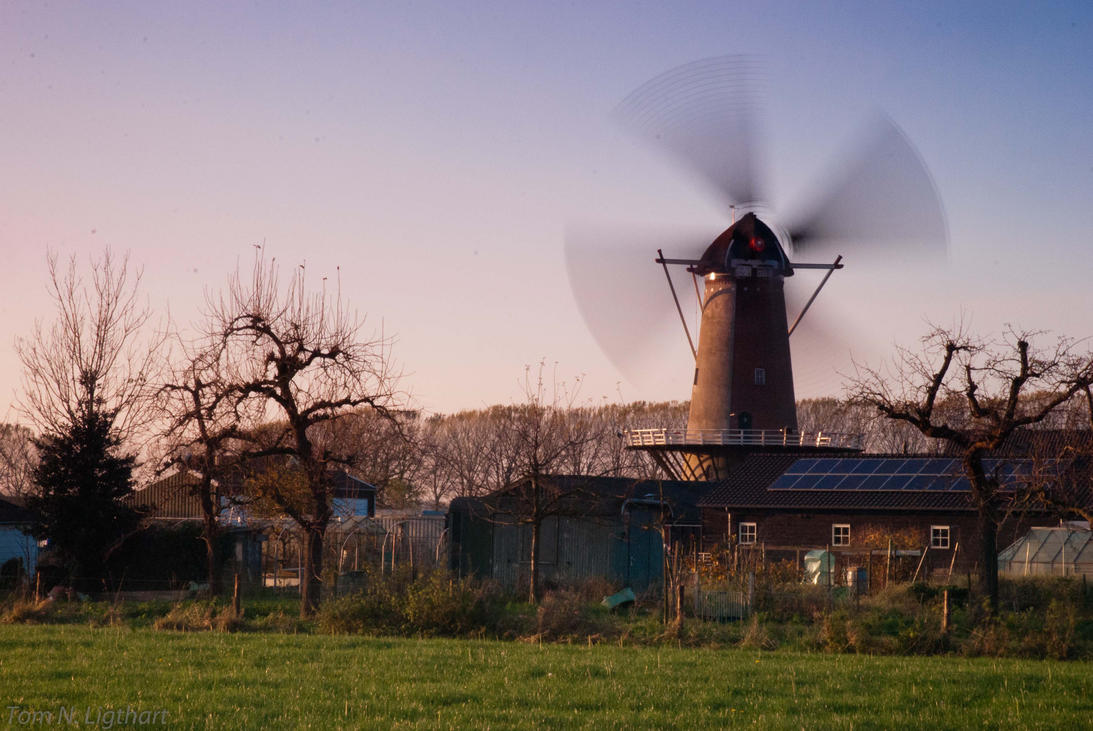 Windmill gone wild! by TomNL