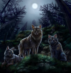 Wolves under moonlight (commission) by Anirysel