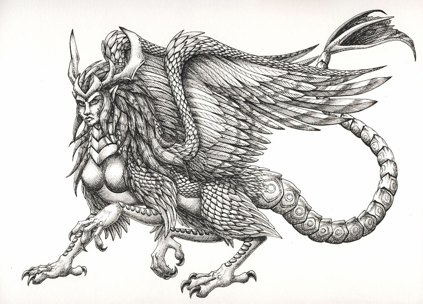 Dragon - Female Piasa Bird by FoolishLittleMortal