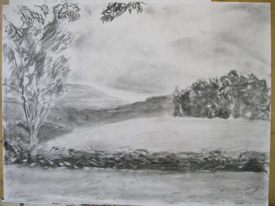 Landscape drawing charcoal by buttonsforemiline on for What is landscape drawing