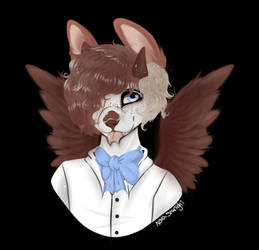 15$ detailed busts (OPEN)