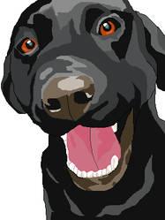 Rex's portrait by Dra-chan