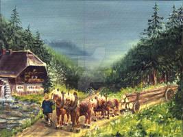 schwarzwald fuhrwerk