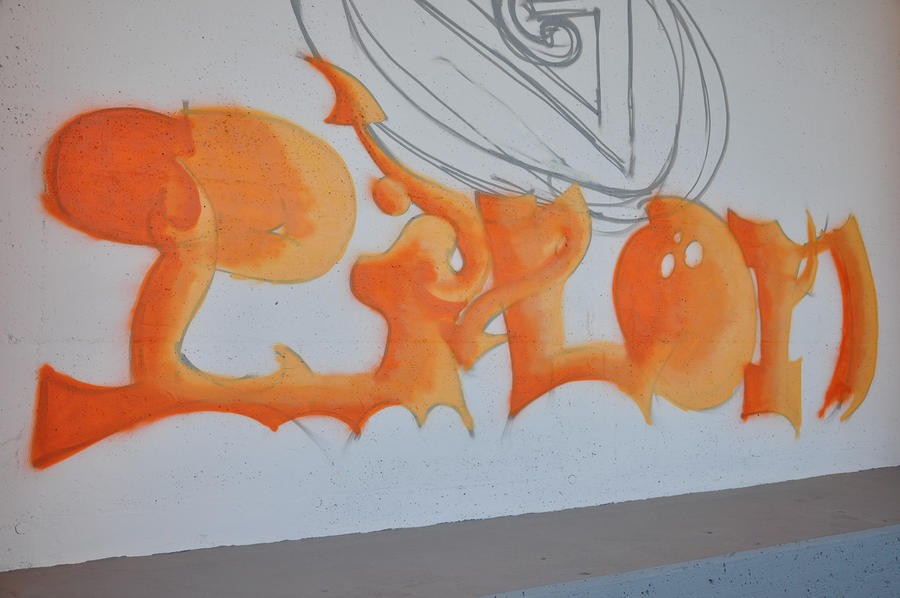 Graffiting my school by LJoker