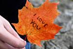 Love leaf by Aries2446