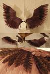 Sparrow wings