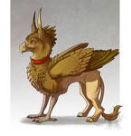 Copper the Gryphon