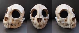 Full Cat Skull Mask - Painted