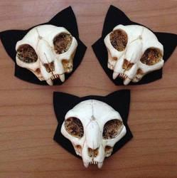 Mini Cat Skull Brooches